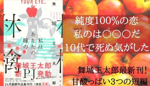 『私はあなたの瞳の林檎』舞城王太郎【純度100%の恋!】