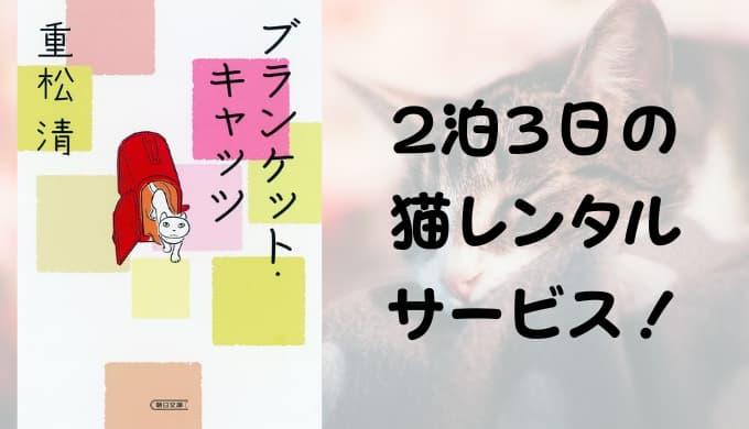 『ブランケット・キャッツ』あらすじと感想【2泊3日の猫レンタルサービス!】