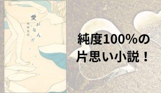 『愛がなんだ』原作小説あらすじと感想【純度100%の恋愛小説!】