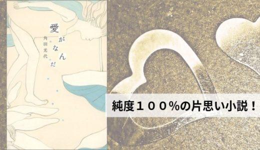 『愛がなんだ』角田光代【今年映画化される大注目作品。純度100%の恋愛小説!】