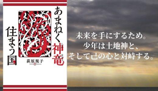 『あまねく神竜住まう国』荻原規子【源氏の少年を主役に描く、本格ファンタジー】