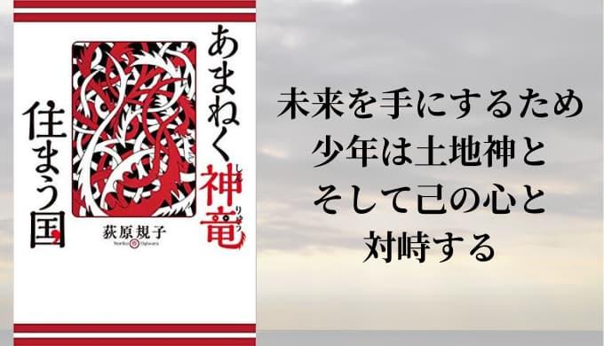 『あまねく神竜住まう国』あらすじと感想【源氏の少年を主役に描く本格ファンタジー】