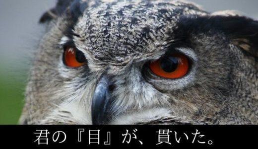 Track No.5 『まちがいさがし』(菅田将暉)