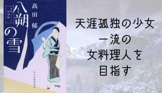 みをつくし料理帖シリーズ『八朔の雪』高田郁【天涯孤独の少女、一流の女料理人を目指す】