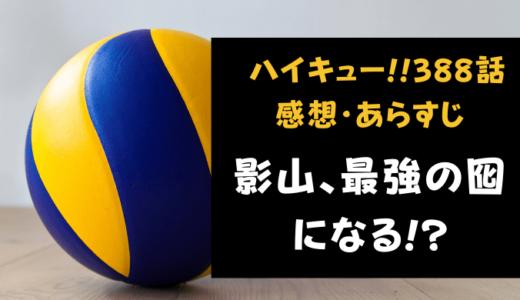 ハイキュー!! ネタバレ最新話388話感想【影山、最強の囮になる!?】