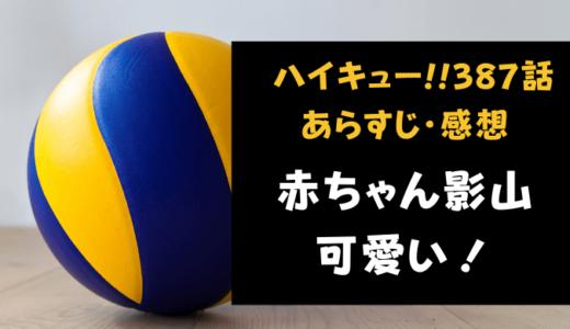 ハイキュー!! ネタバレ最新話387話感想【影山の赤ちゃん時代が可愛い!】