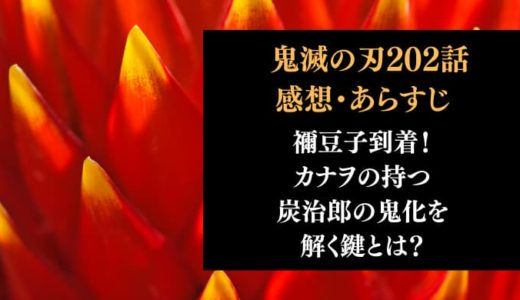 鬼滅の刃 ネタバレ202話感想【禰豆子到着!カナヲの持つ炭治郎の鬼化を解く鍵とは?】