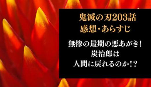 鬼滅の刃 ネタバレ203話感想【無惨の最期の悪あがき!炭治郎は人間に戻れるのか!?】
