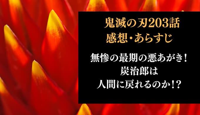 鬼滅の刃 ネタバレ最新話203話感想【無惨の最期の悪あがき!炭治郎は人間に戻れるのか!?】