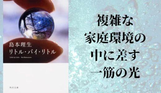 『リトル・バイ・リトル』島本理生【複雑な家庭環境の中に差す一筋の光】
