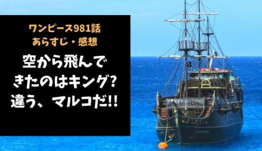 ワンピース ネタバレ最新話981話感想【空から飛んできたのはキング?違う、マルコだ!!】