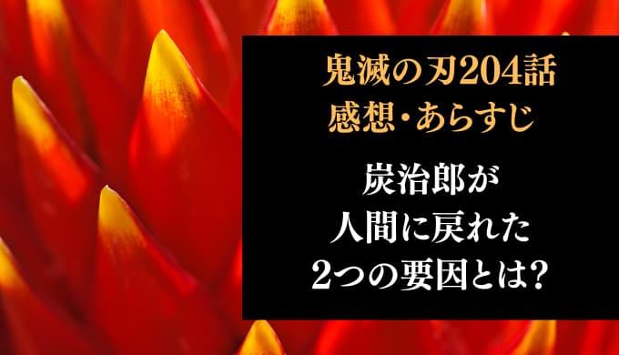 鬼滅の刃 ネタバレ最新話204話感想【炭治郎が人間に戻れた2つの要因とは?】