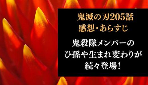 鬼滅の刃 ネタバレ最新話205話感想【最終回!鬼殺隊メンバーのひ孫や生まれ変わりが続々登場!】
