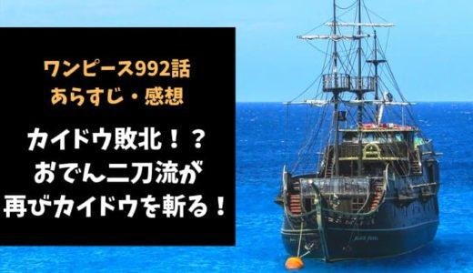 ワンピース ネタバレ992話感想【カイドウ敗北!?おでん二刀流が再びカイドウを斬る!】