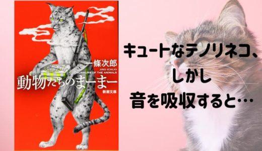 『動物たちのまーまー』個性溢れる動物大集合! テノリネコ、ネコビト、中年男に変身するラッコも…!?