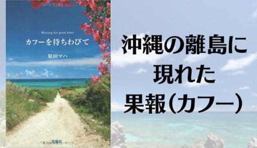 『カフーを待ちわびて』あらすじと感想【沖縄の離島に現れた果報(カフー)】