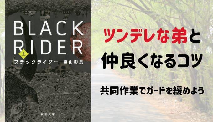 『ブラックライダー』書影画像