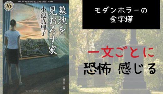 『墓地を見おろす家』あらすじと感想【一文ごとに恐怖を感じるモダンホラーの金字塔】